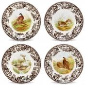 Set/4 Assorted Dinner Plates