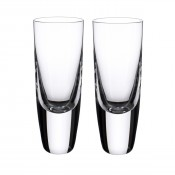 Set/2 Shot Glasses