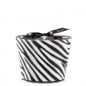 Jungle Safari - Max 10 Scented Candle, 10cm - Zebbrino - Limited Edition