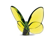 Lucky Butterfly, Olive Green